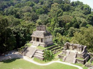 Palenque Maya archaeological site, Temple of the sun. surrounded by lush tropical rainforest.